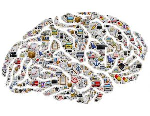 Brain image made of many things